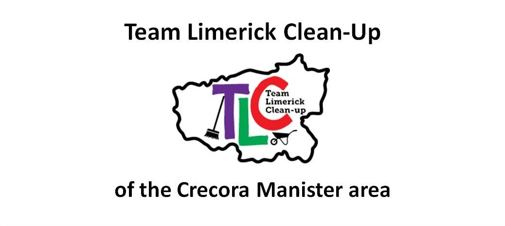 Team Limerick Clean-up